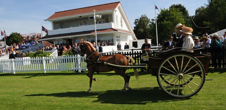 Carriage driving in front of Royal Box.jpg